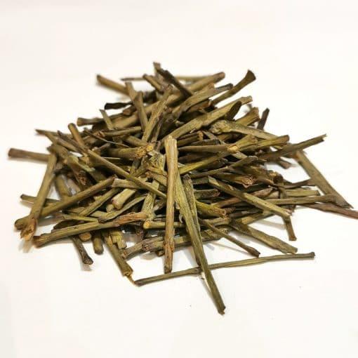 Nilgiri Bamboo 1